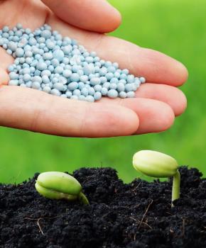 Пестициды и агрохимикаты